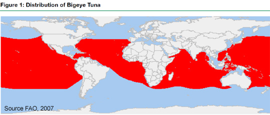 Bigeye Tuna distribution map