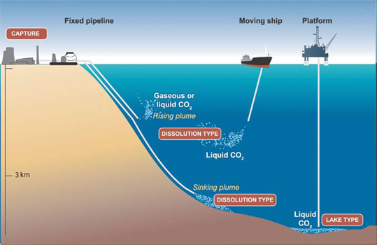 sanity and deep ocean currents overview Currents: noaa's national ocean service education the currents tutorial is an overview of the types of currents, what causes them drifter deep ocean drifter current profiler shore-based current meters how currents affect our lives references roadmap to resources.