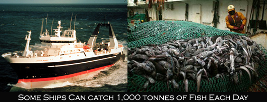 Overfishing, large trawler and catch
