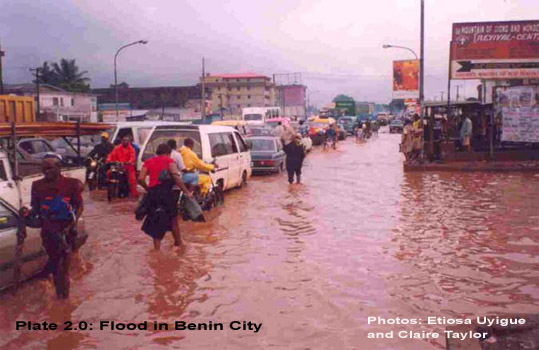 Niger Nenin City Flood
