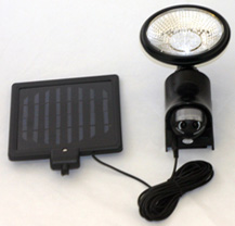 solar light security